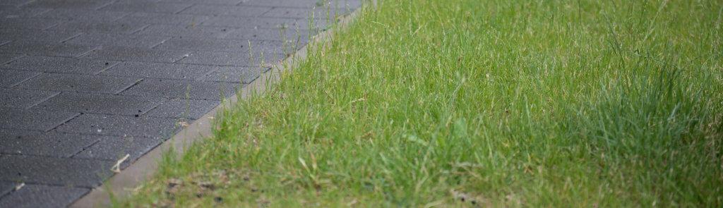 Rasenfläche mit Rasengitter