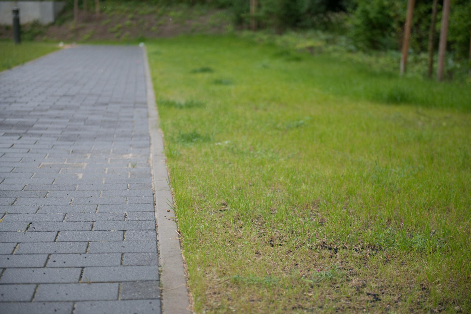 Rasengitter neben einem Weg