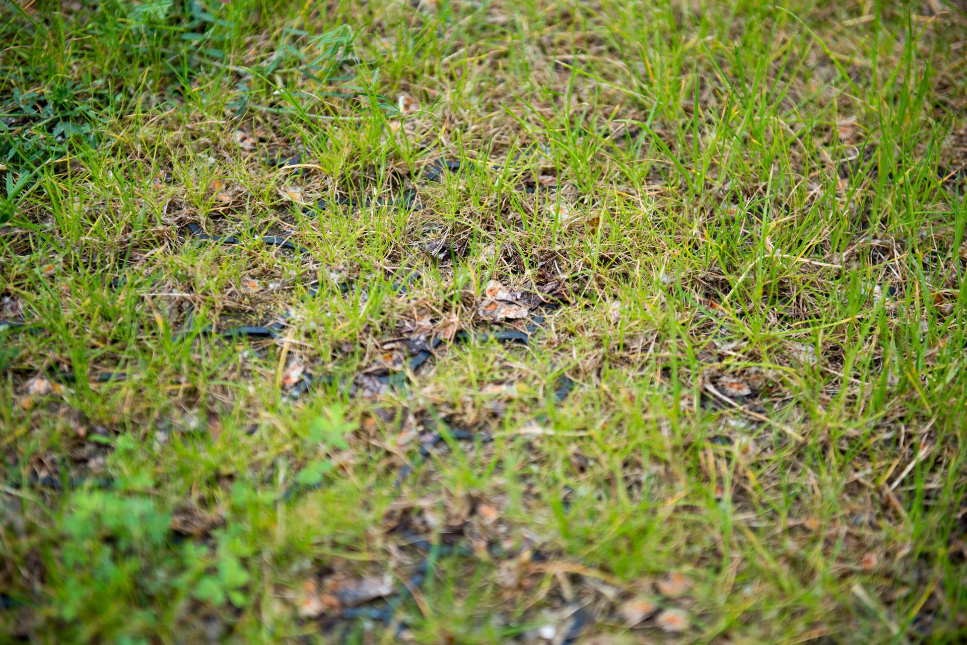 Nahansicht eines befüllten Rasengitter